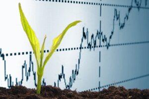 sostenibilità manageriale